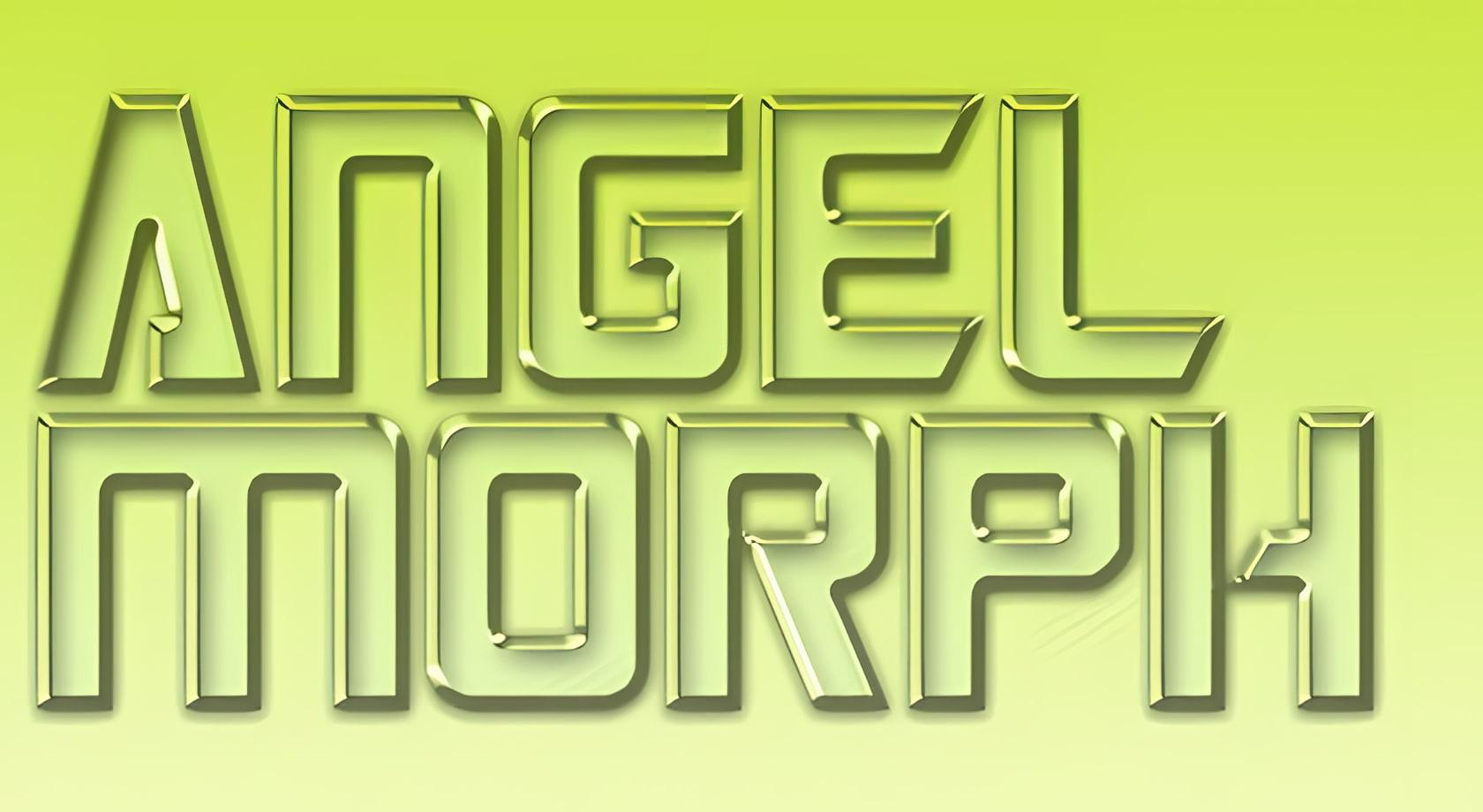 AngelMorph