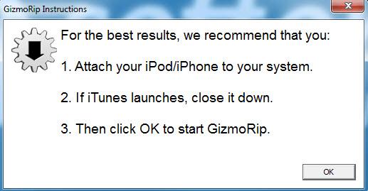 GizmoRip