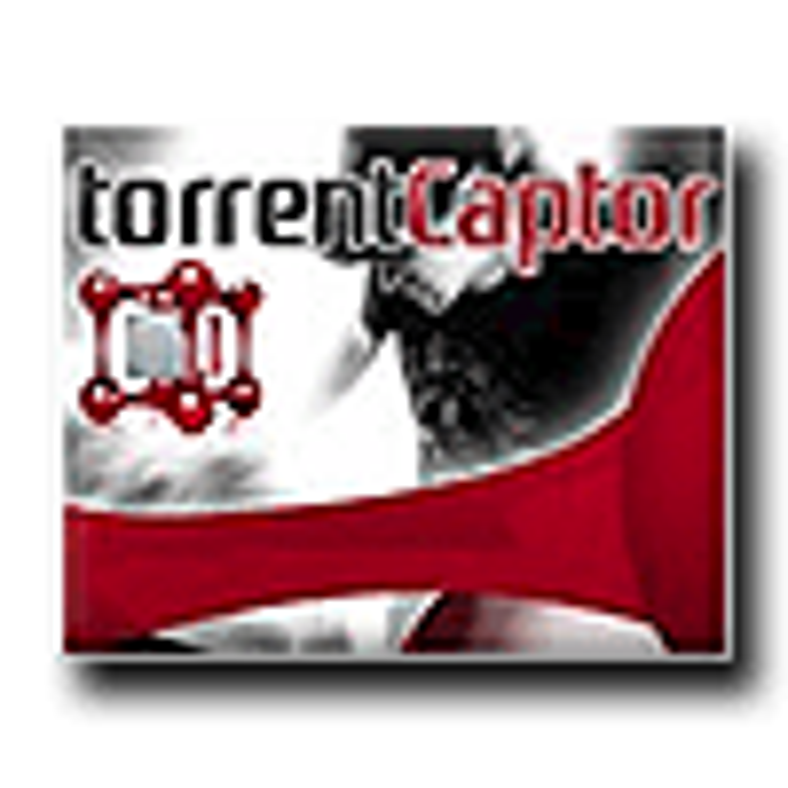 Torrent Captor
