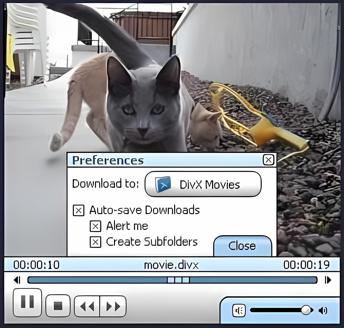 DivX Browser Plug-In