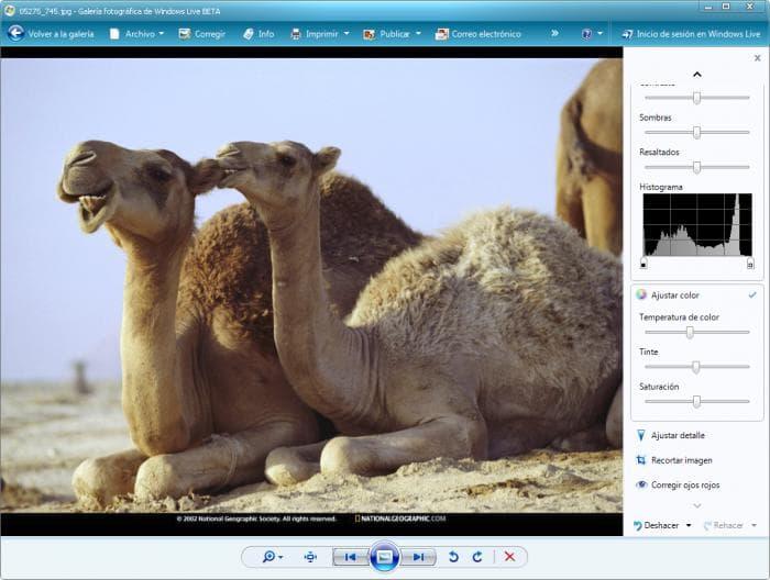 Galeria Fotográfica do Windows Live