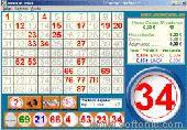 Bingo Las Vegas