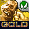 FaceFighter Gold 1.04