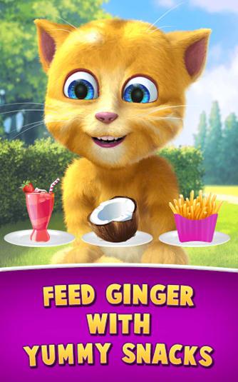 Aniversário do Ginger