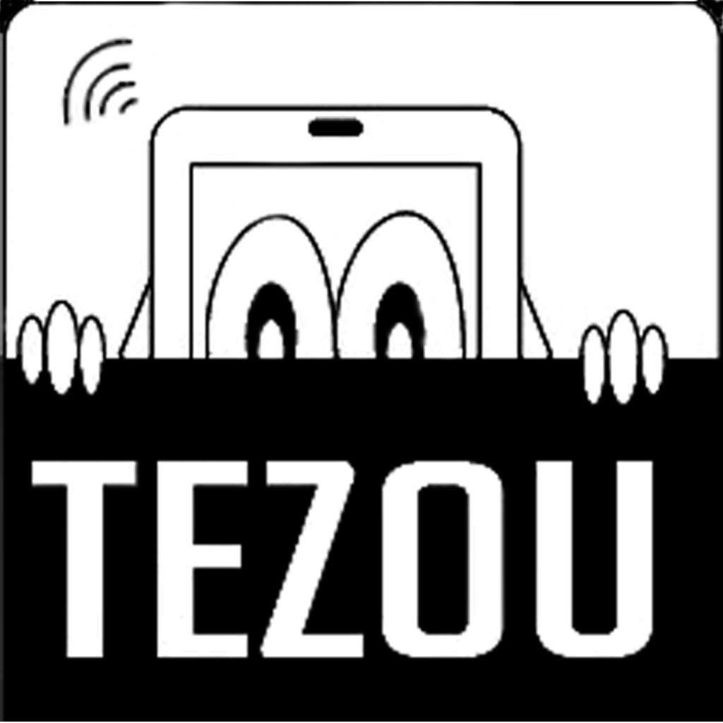 Tsecure 1.1