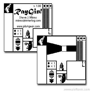 RayGin!
