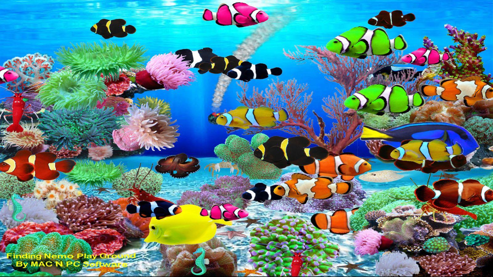 Finding Nemo Aquarium