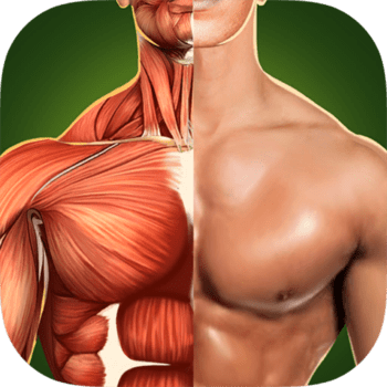 Human Anatomy 3D Bones And Muscles PRO