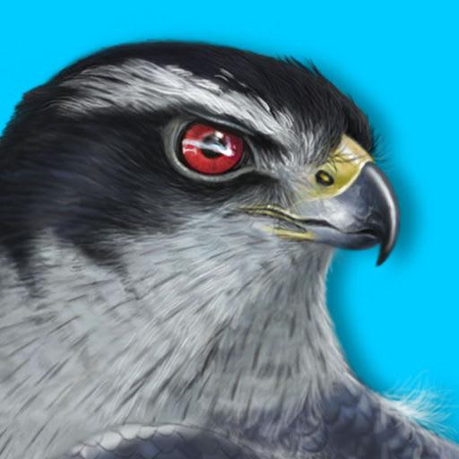 iBird Plus Guide to Birds 10.06
