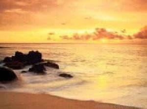 Beach Lovers Supreme