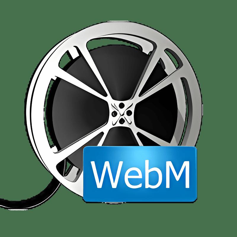 Bigasoft WebM Converter