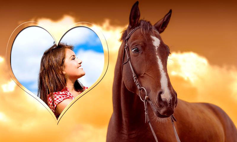 Horse Photo Frames