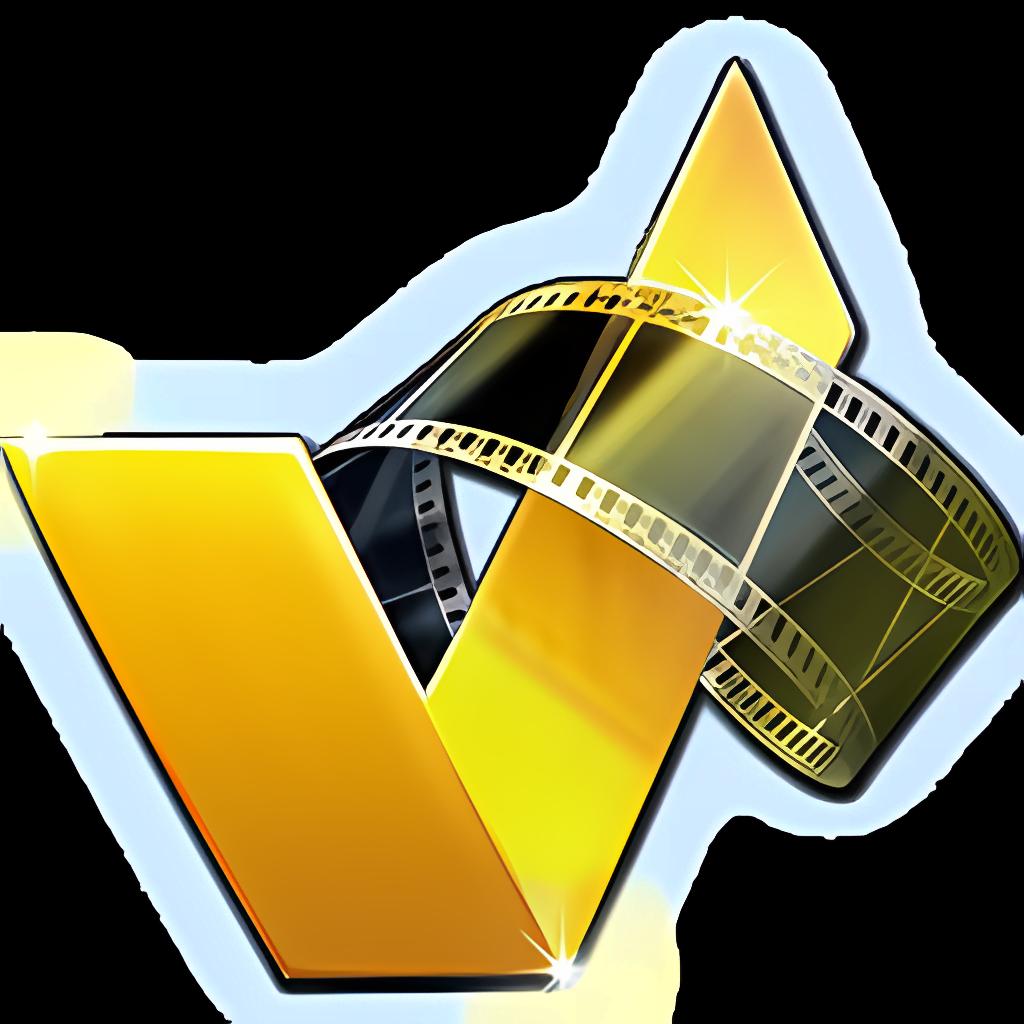 ACDSee Video Converter