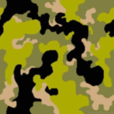 Camouflage Desktop