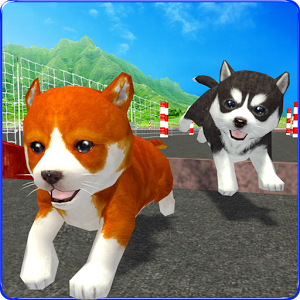 Cute Puppy Dog Racing Sim 2017 1.0