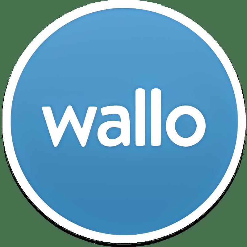 Contabilidad Doméstica Wallo