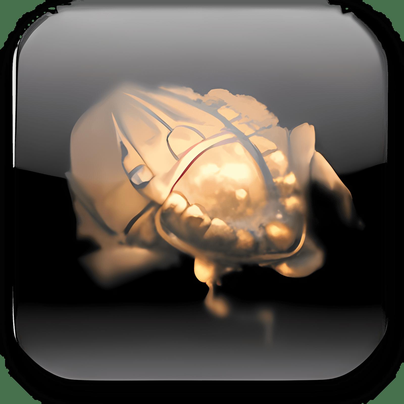 Scarabay 3.084 Beta