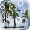 Beach Palms Live Wallpaper 1.2
