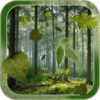 Forest Live Wallpaper 1.2