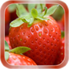 Strawberry Live Wallpaper 1.1