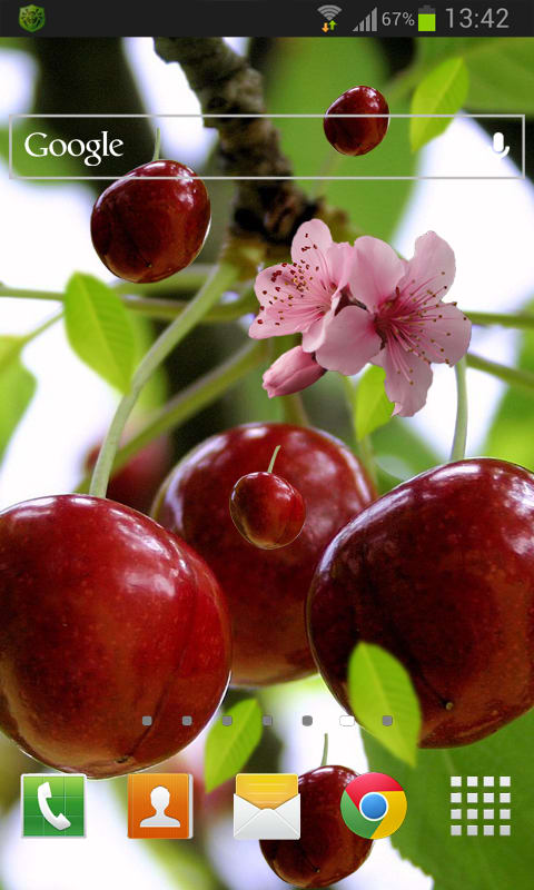 Berry Cherry LWP Free