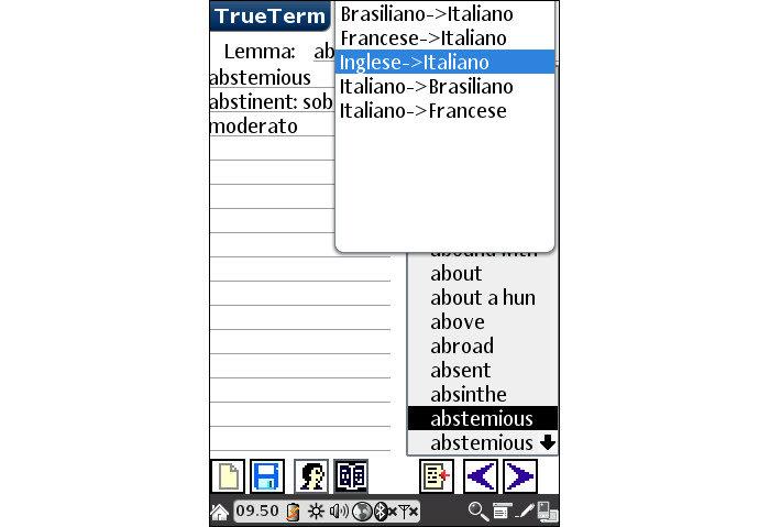 TrueTerm Travel Dictionary