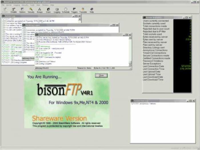 BisonFTP Server