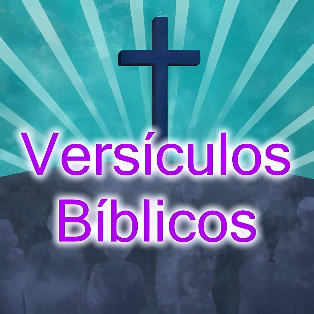 Versículos Bíblicos 2.0.0