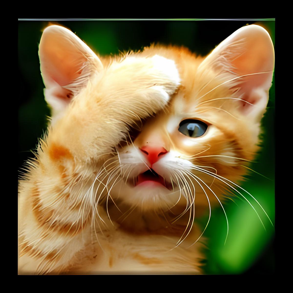 Gatos Fondos y fotos graciosas 1.5