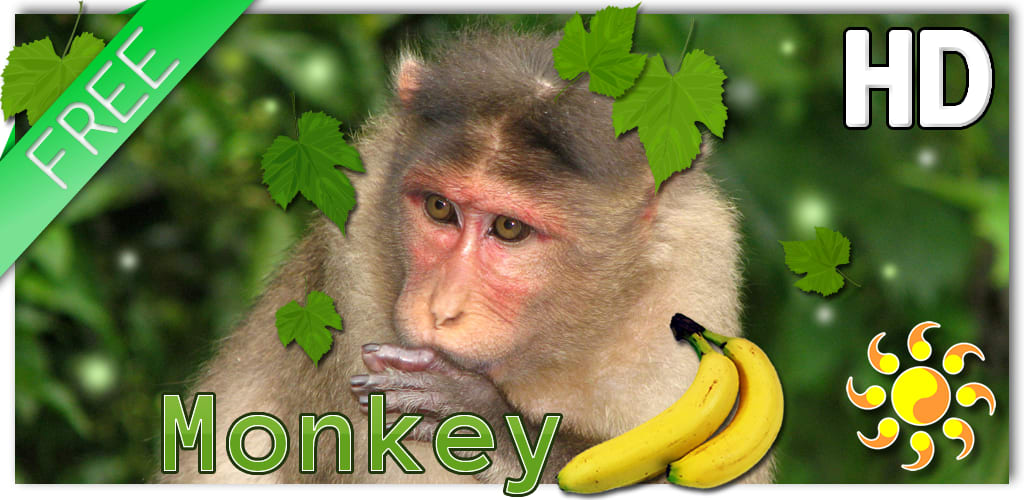 Monkey Live Wallpaper