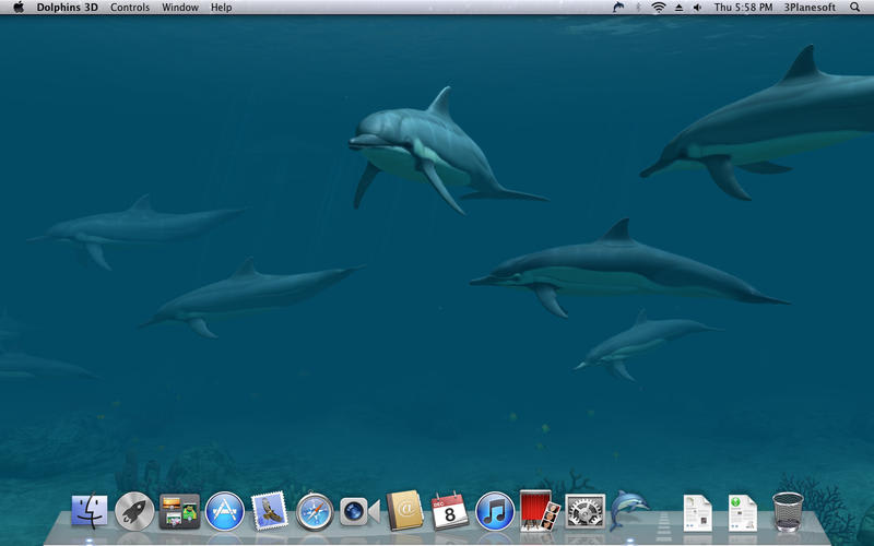 Dolphins 3D