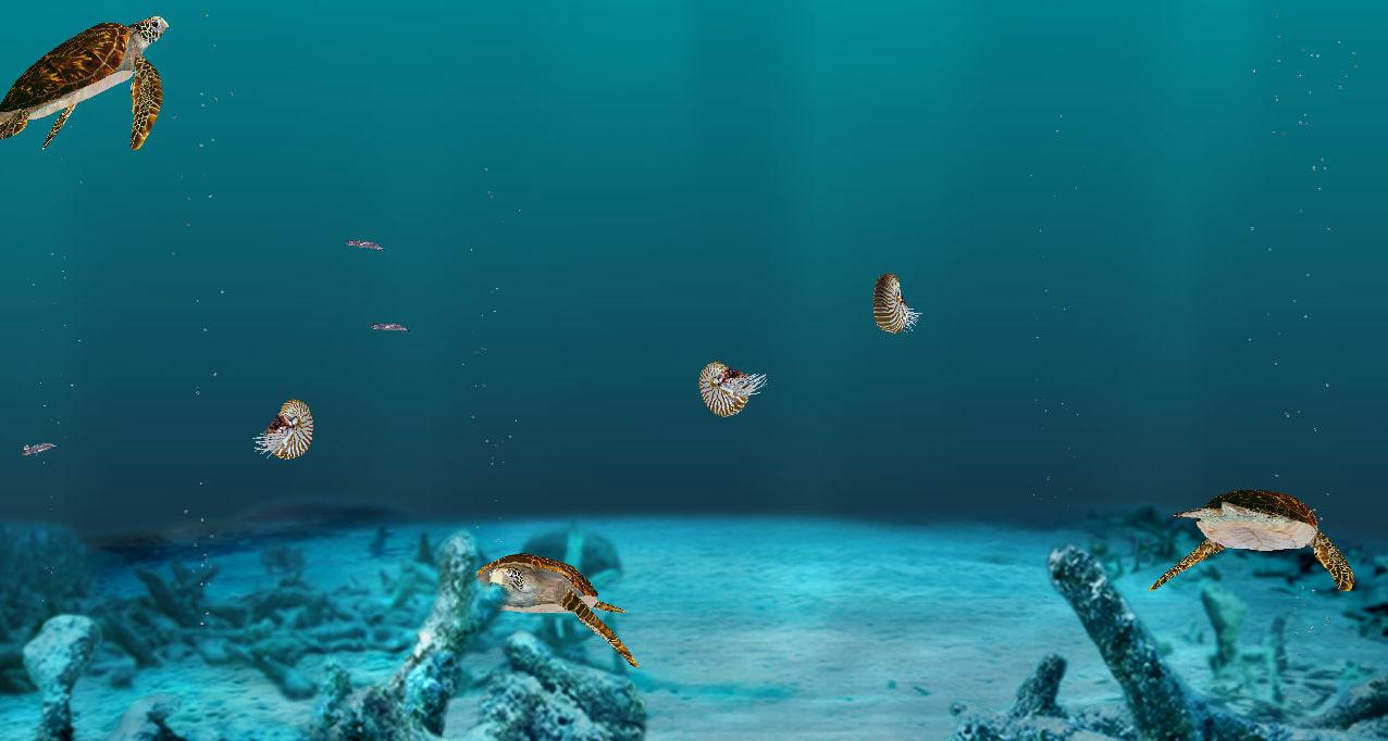 Aquazone Seven Seas Deluxe