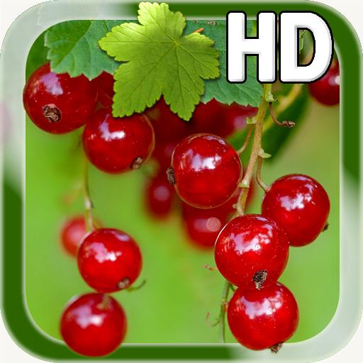 Berry Live Wallpaper