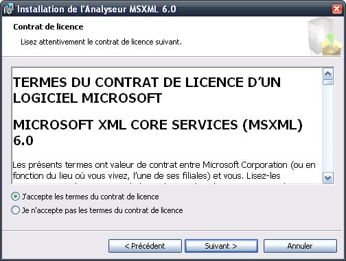 Microsoft Core XML Services