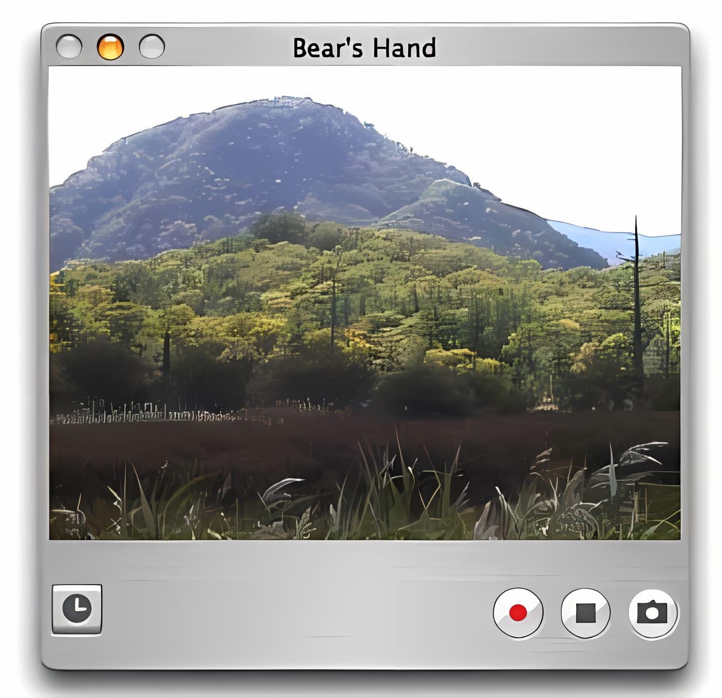 Bears Hand
