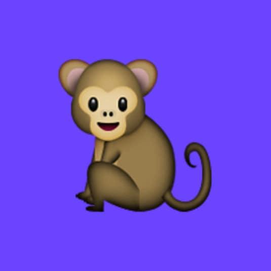 Monkey — have fun chats