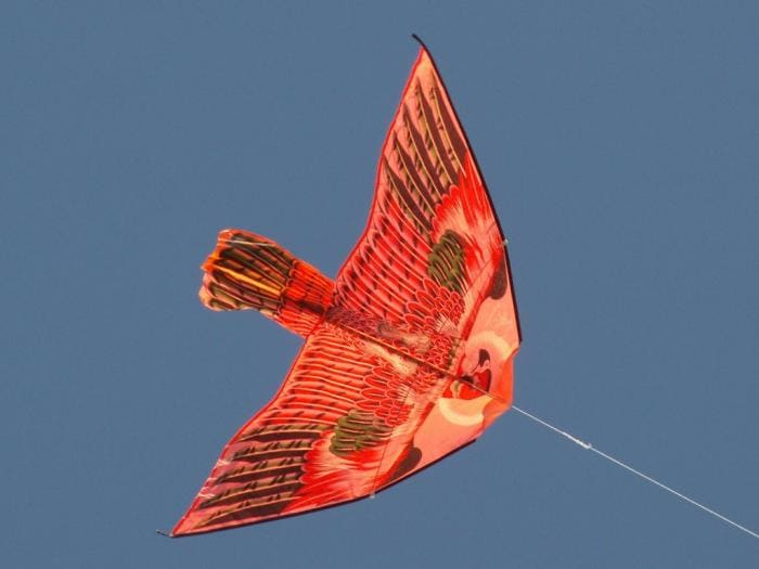 Free Kite fly Screensaver