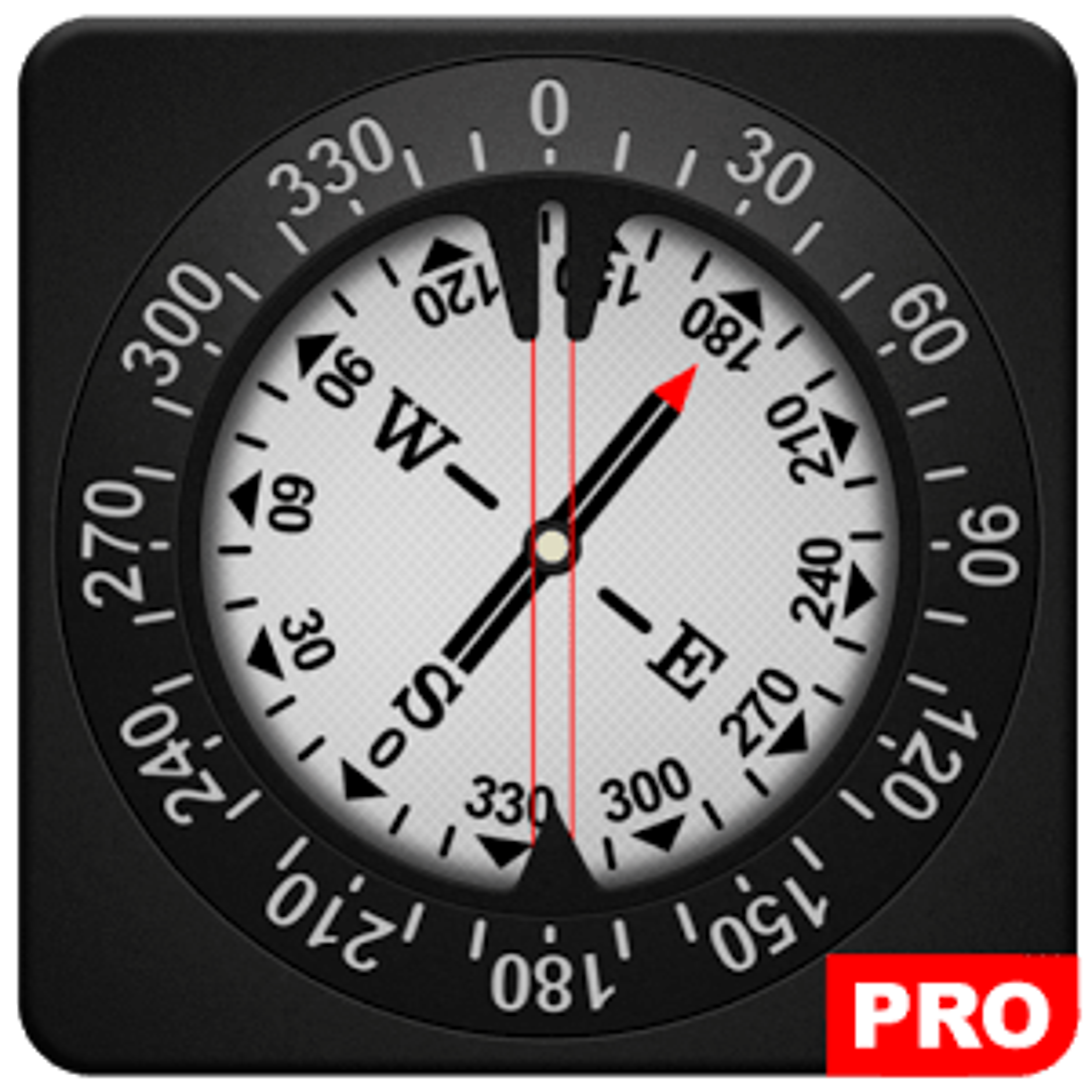Compass PRO 1.077