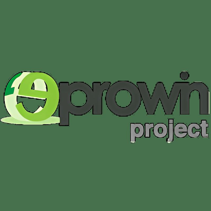 Project eProwin  2015