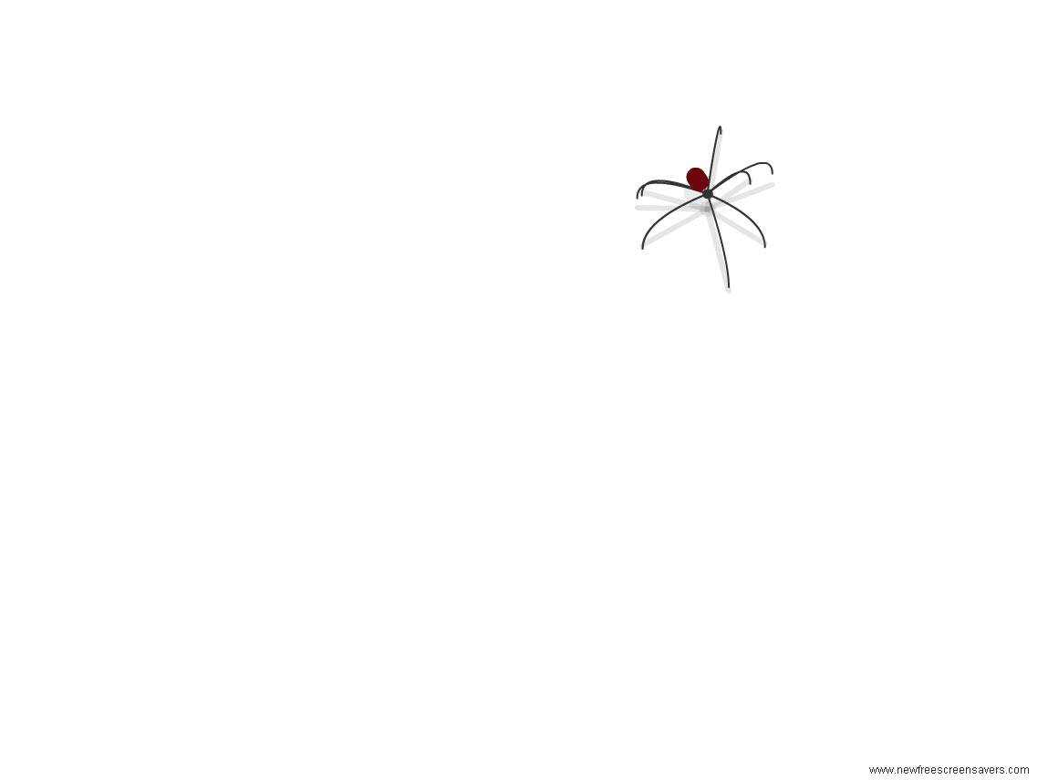 Spider Screensaver