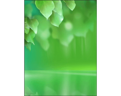 Abst Green Leaves Wallpaper