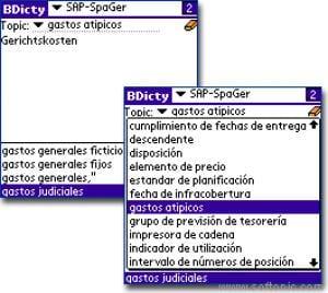 SAP Terms Spanish/German Dictionary