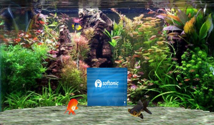 Fantastic 3D Fish Aquarium Screen Saver