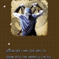 Senshi The Ninja Warrior