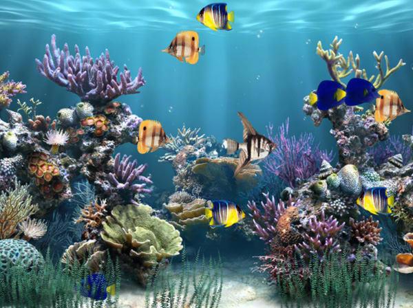 Aquarium Animated Wallpaper