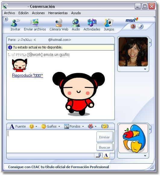 MSN Winks Plus