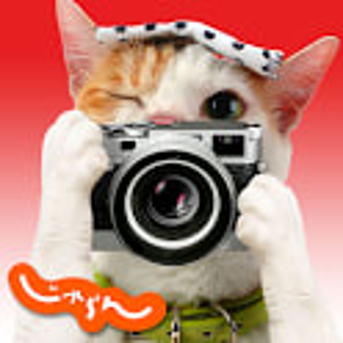 にゃらんカメラ