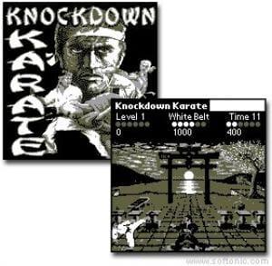 Knockdown Karate