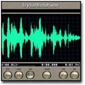 Wave Edit Pro