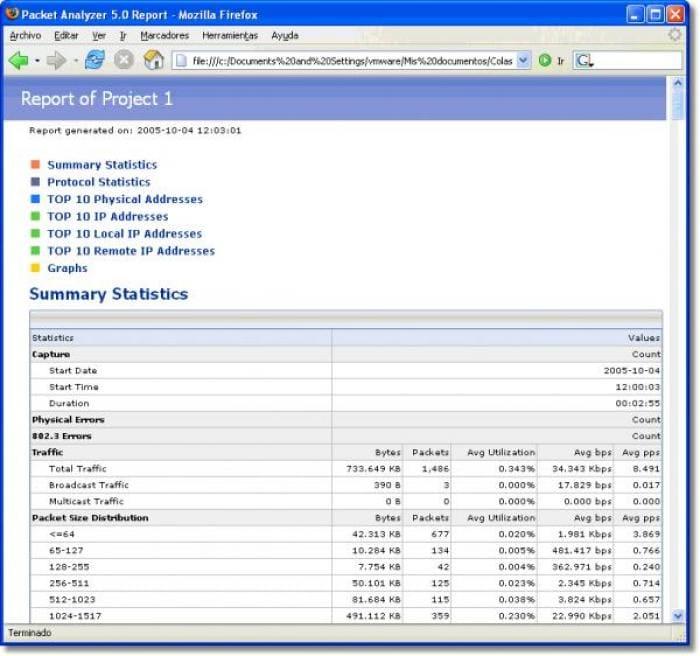Packet Analyzer
